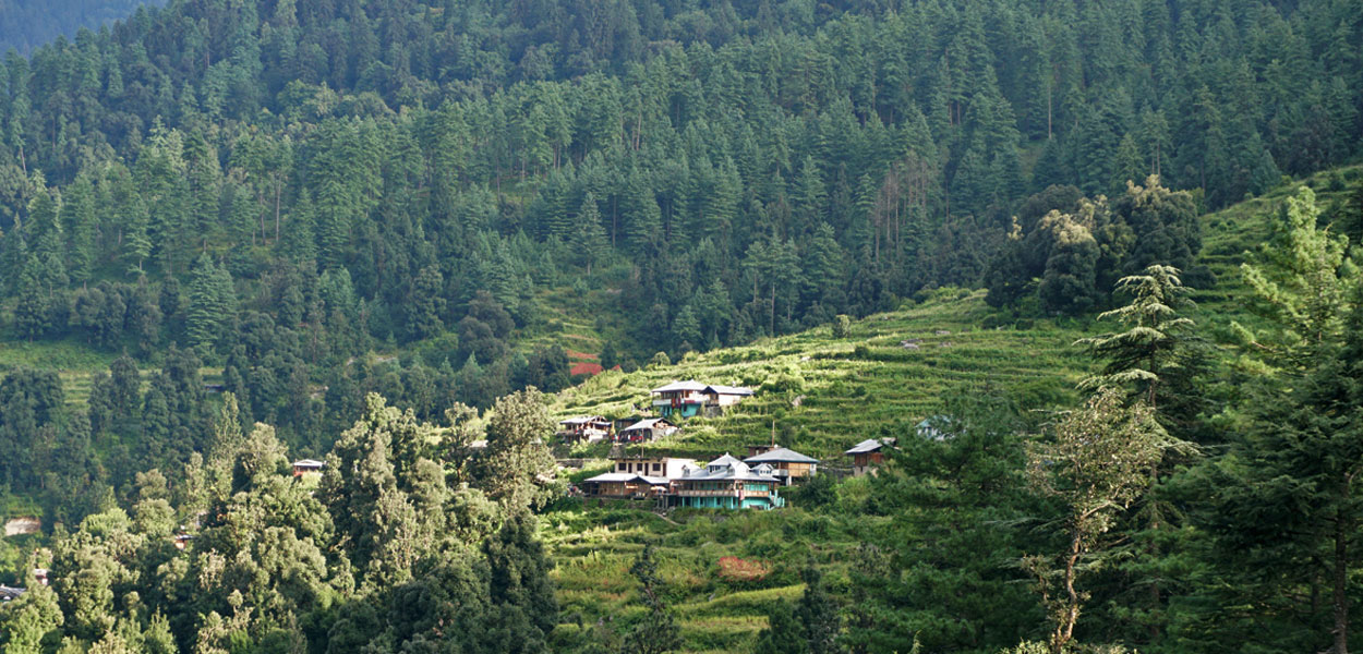 Sankri Village Activities